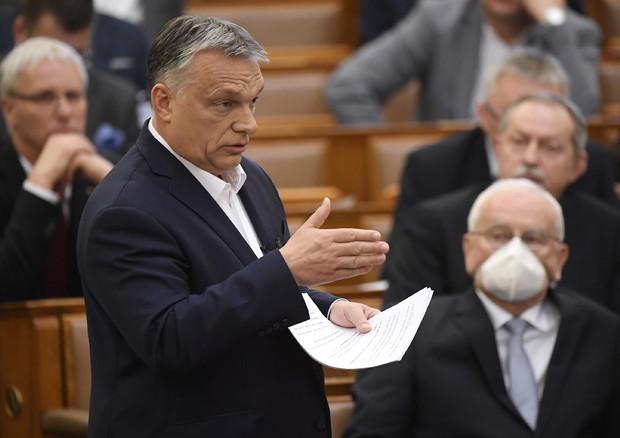 La dialettica dello Stato forte e l'Ungheria di Orban